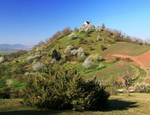 Premiumwanderweg Hirschau