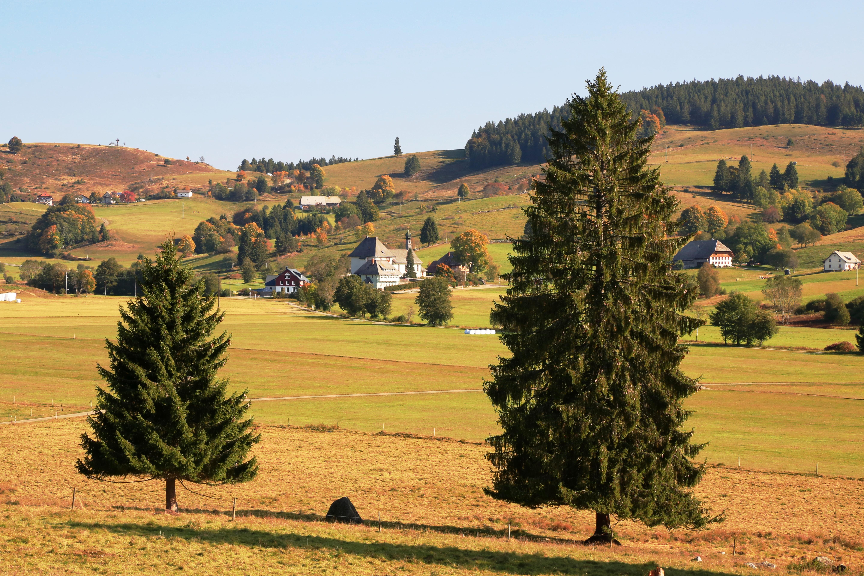 Auf dem Ibacher Panoramaweg