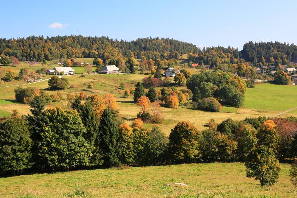 Aussicht vom Premiumwanderweg Ibacher Panoramaweg
