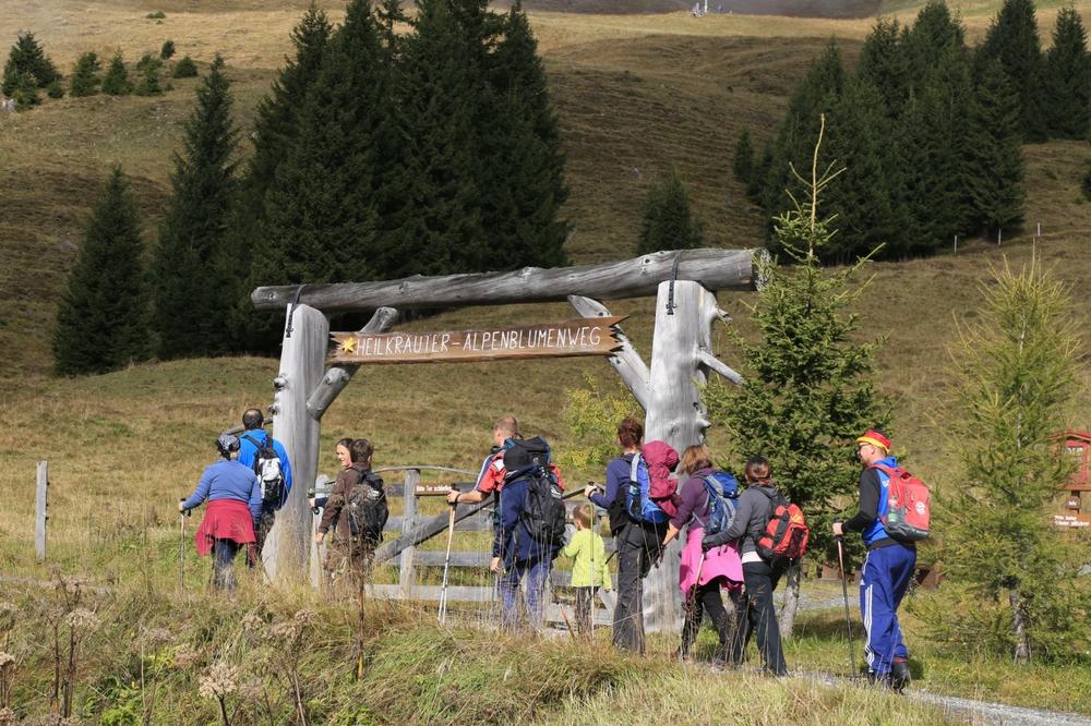 Der Heilkräuter- und Alpenblumenweg ist beliebt bei Groß und Klein.