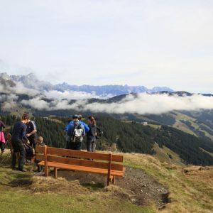 Das Almenparadies um Saalbach-Hinterglemm