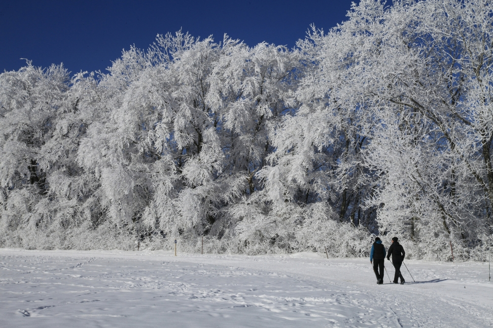 Winterwandern in Baden-Wuerttemberg