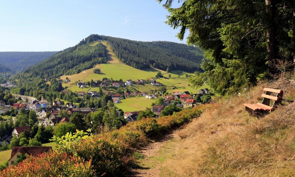Aussichtspunkt im Nordschwarzwald