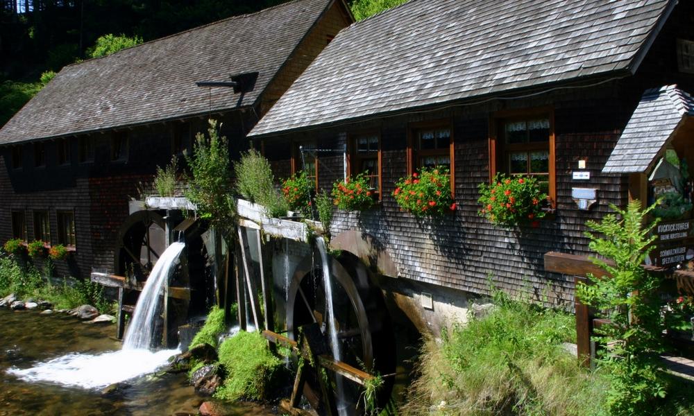 Haus im Schwarzwald