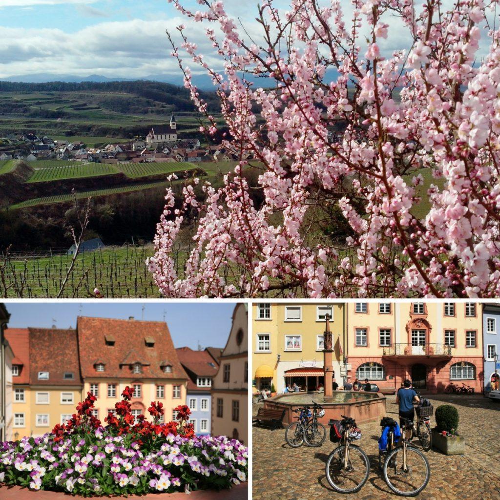 Am Ende der Radtour durch den Kaiserstuhl kommen wir duch das zauberhafte Städtchen Endingen.