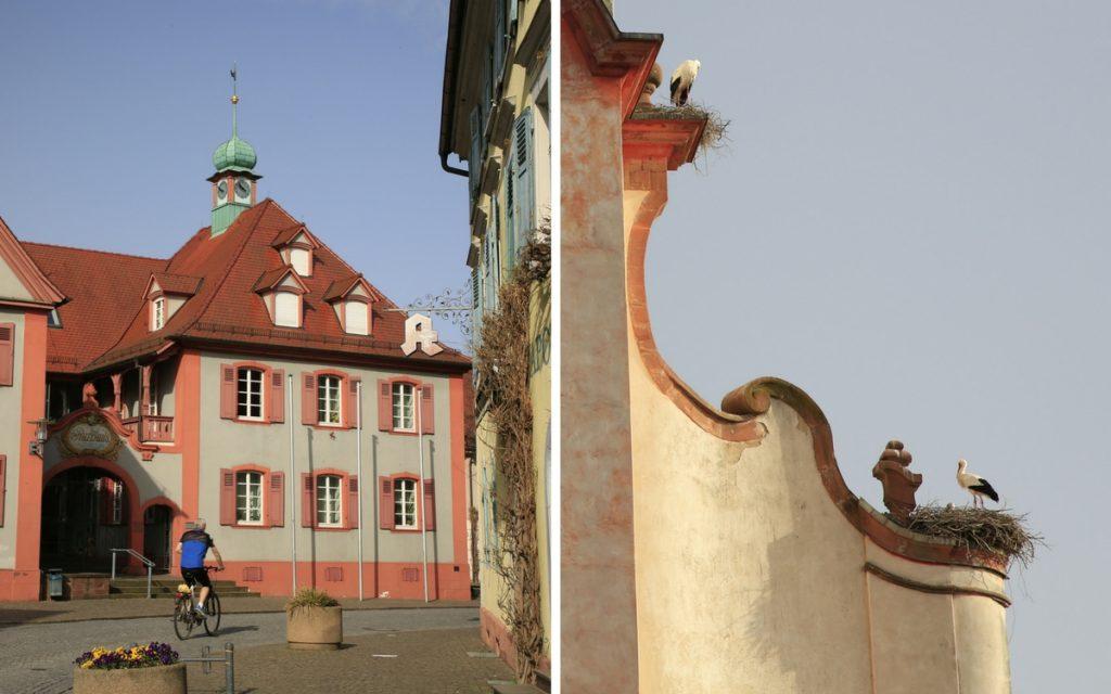 Unsere Radtour durch den Kaiserstuhl führt uns durch das Städtchen Riegel.