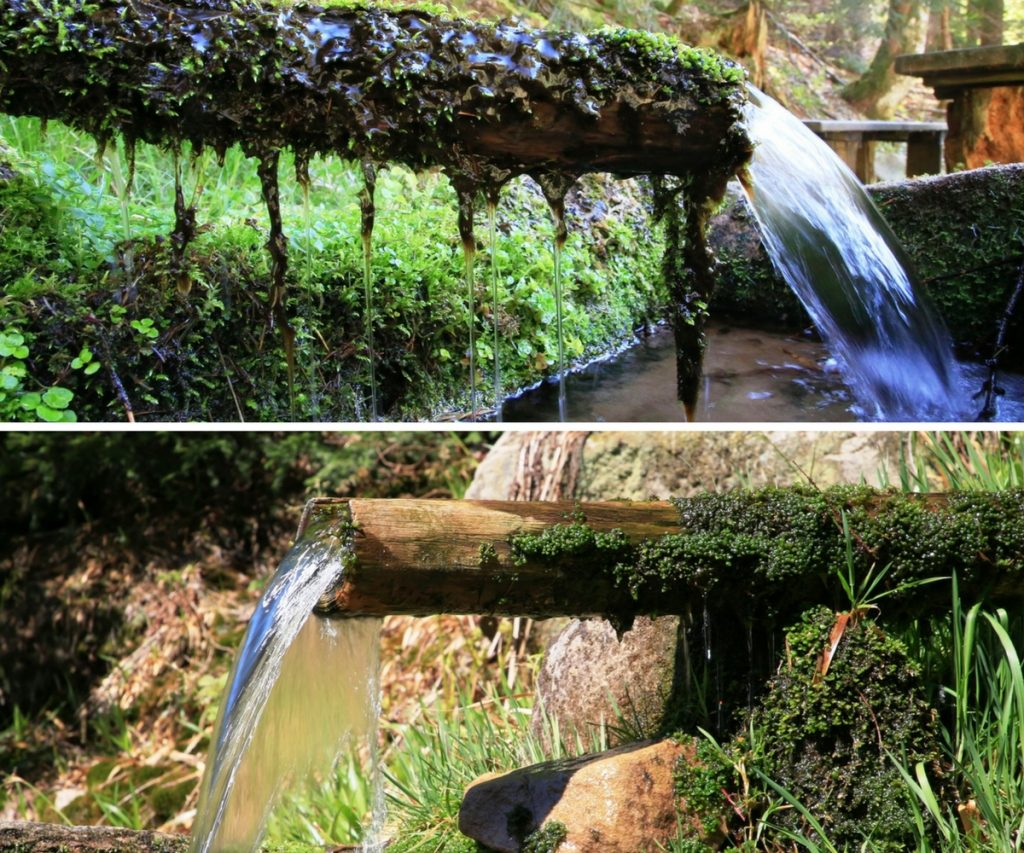 Der Silber-Brunnen und der Esels-Brunnen im Rotmurgtal im Nationalpark Schwarzwald.