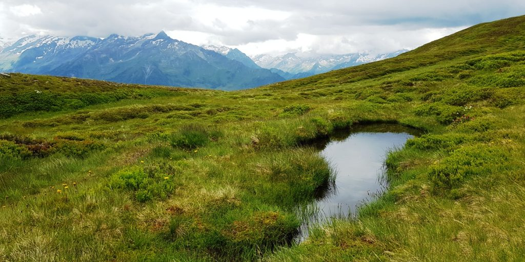 Kleiner See in den Kitzbüheler Grasbergen mit Blick zu den Hohentauern