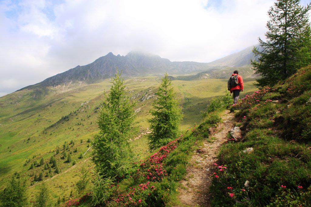 Wanderung mit Blick ins Gsieser Tal