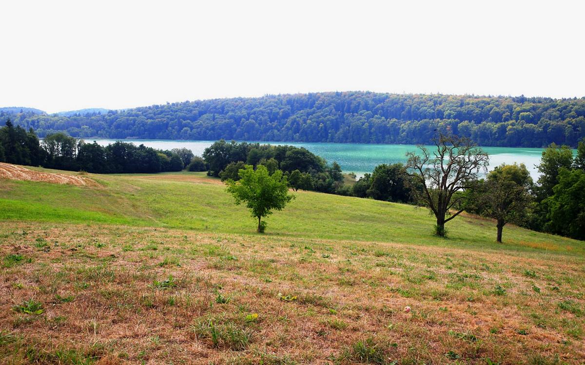 Vom Bodensee zum Mindelsee