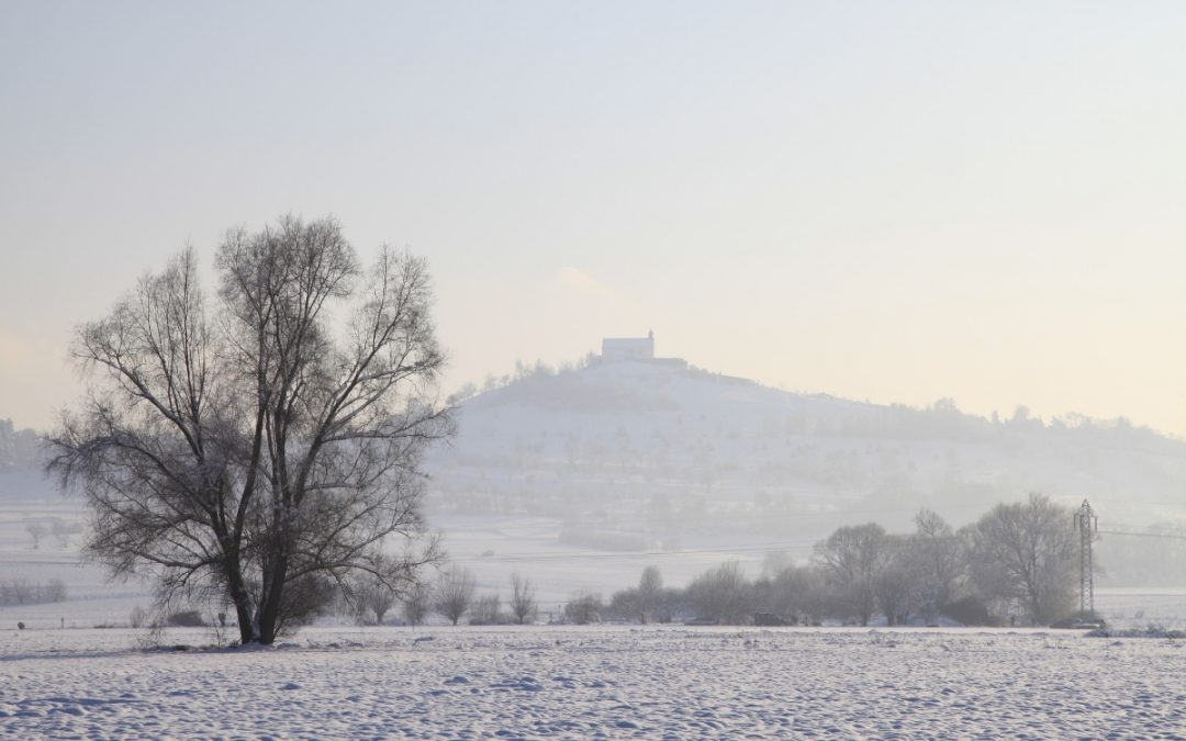 Winterwandern in Baden Wuerttemberg