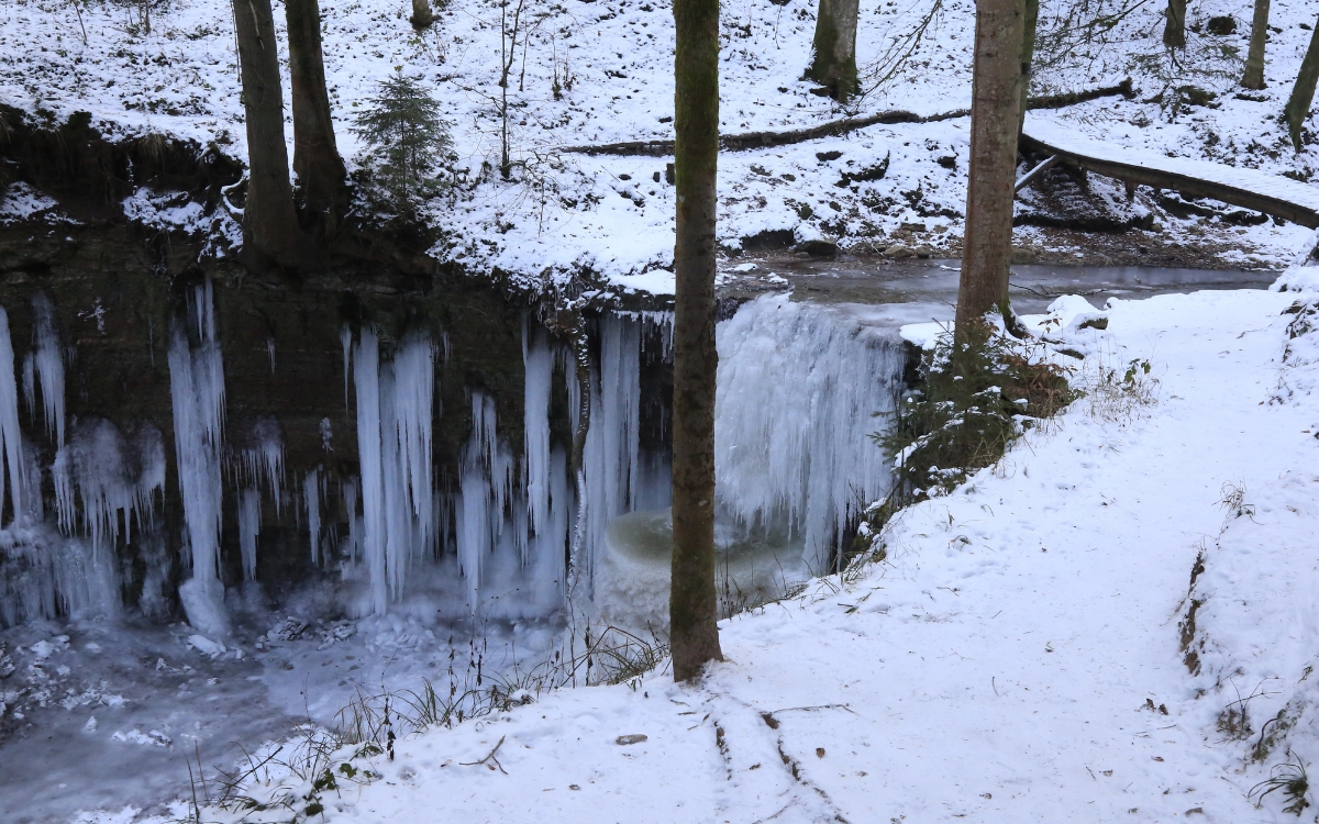 Winterwandern in Baden Wuerttemberg Murr