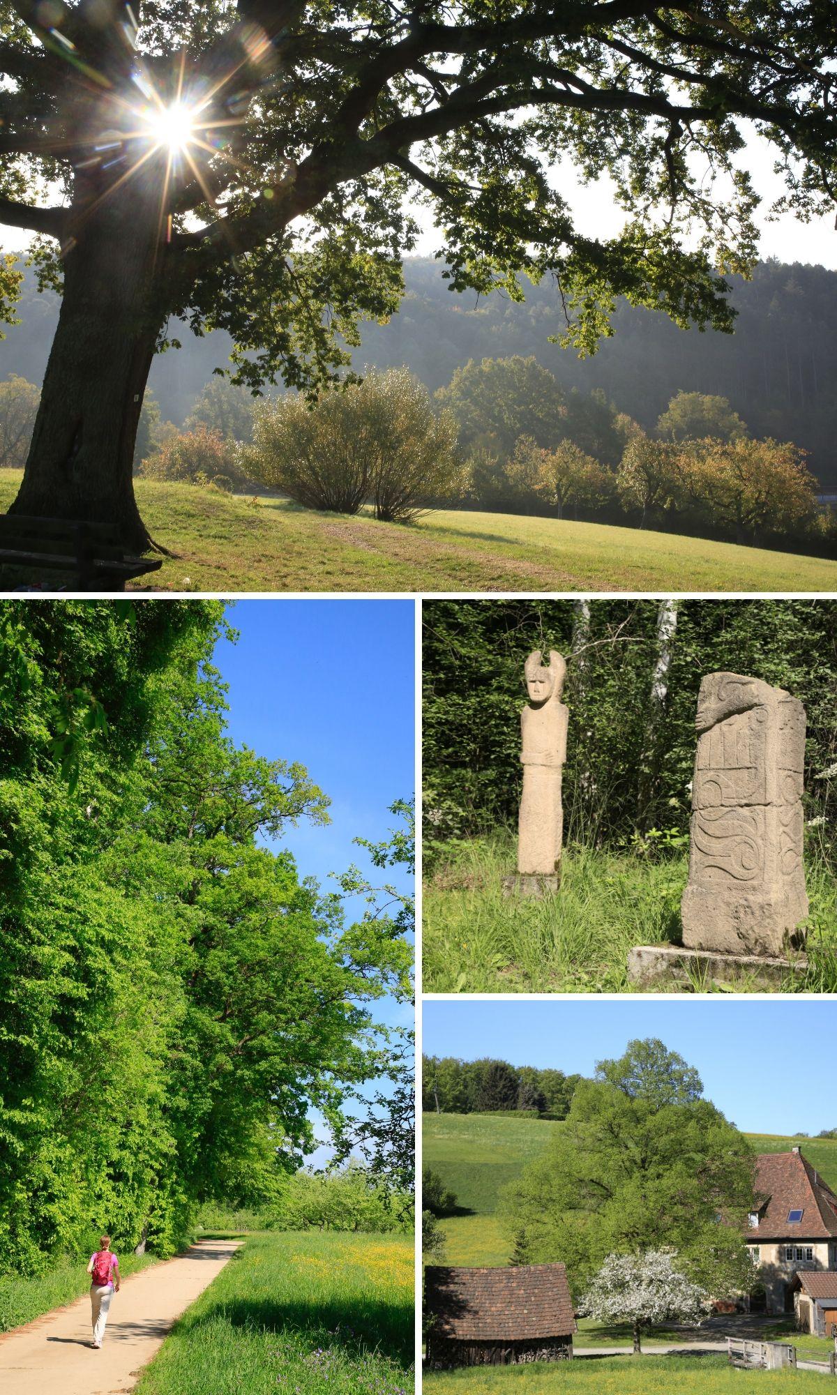 Eindrücke der Spaziergänge des neuen Guest Gliedes Leinfelden Echterdingen