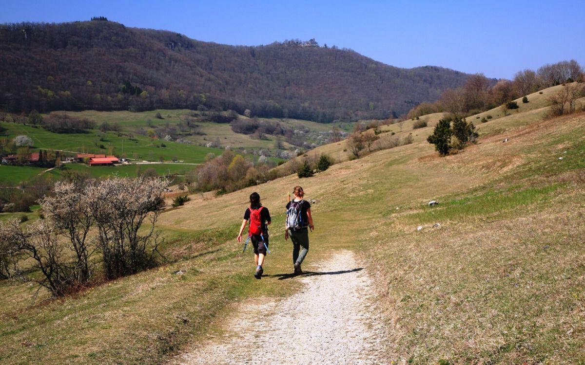 Wanderung durch die Eichhalde mit Blick auf die Ruine der Burg Teck